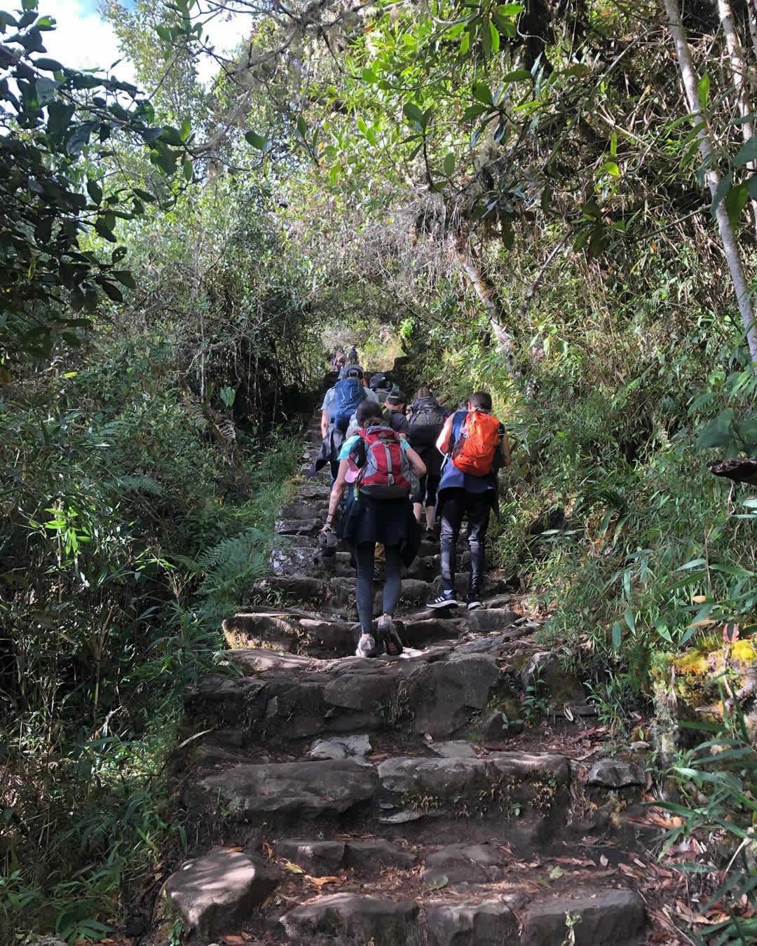 boleto montaña machupicchu